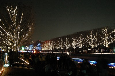 2008.12.28-11