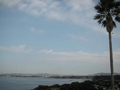 2009.02.07-5
