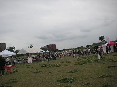 2009.05.16-13