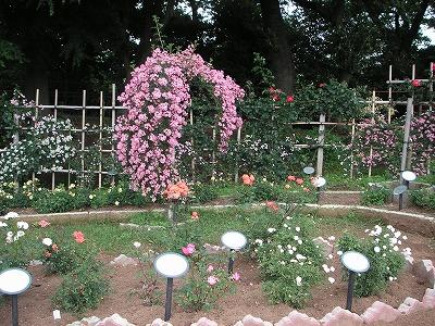 2009.06.03-17