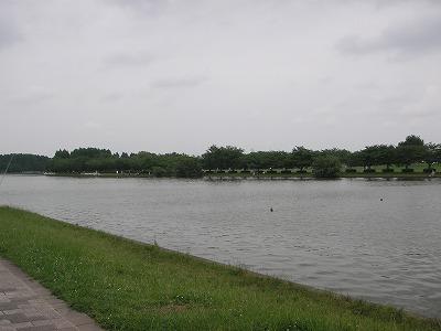 2009.06.15-20