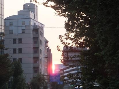終演後、交差点に夕陽が!