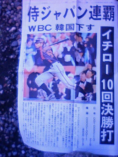 WBC号外