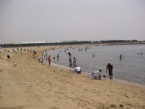 潮干狩りを楽しむ人たち