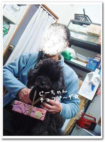 DSC00019_20110214190941.jpg