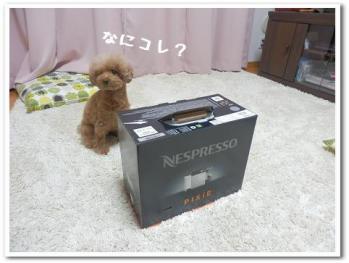 PC140355.jpg