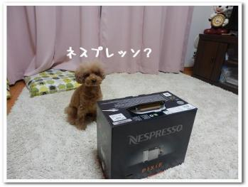 PC140357.jpg