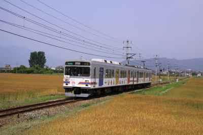 小麦畑の電車