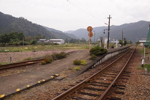 樽見鉄道神海駅ホーム全景