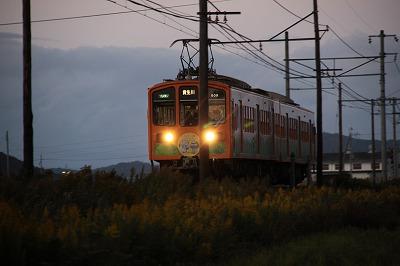 夕闇の田圃を行く電車