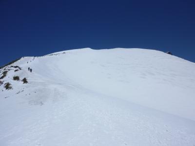 頂上直下の雪田