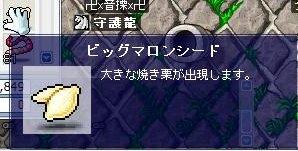 Maple0003_20090101194838.jpg