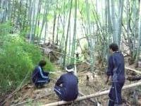 縮小 竹狩り