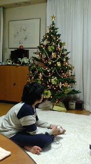 クリスマスのムスコ