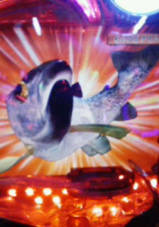 サムライ巨大魚
