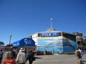 pier391