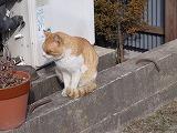 gazou_20110224172512.jpg