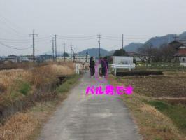 DSCF1217_400.jpg