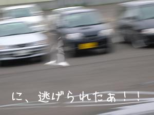 06060104.jpg