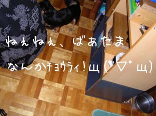 06062001.jpg