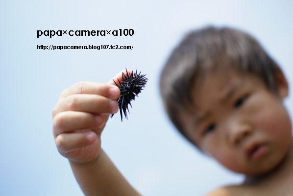 20080904-01-02.jpg
