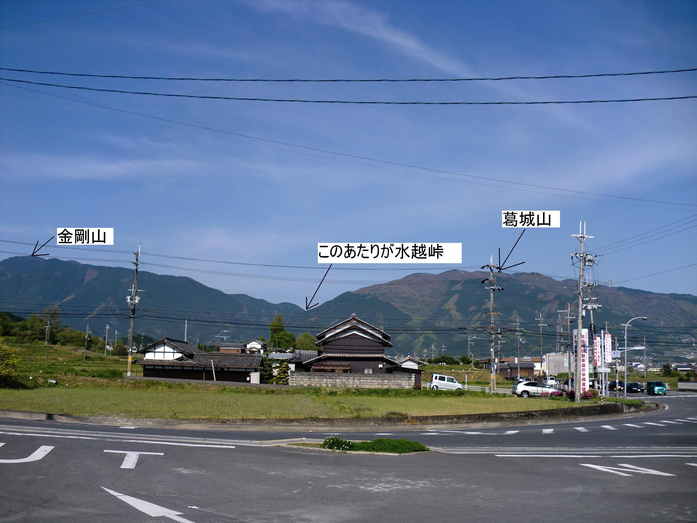 1005020009.jpg