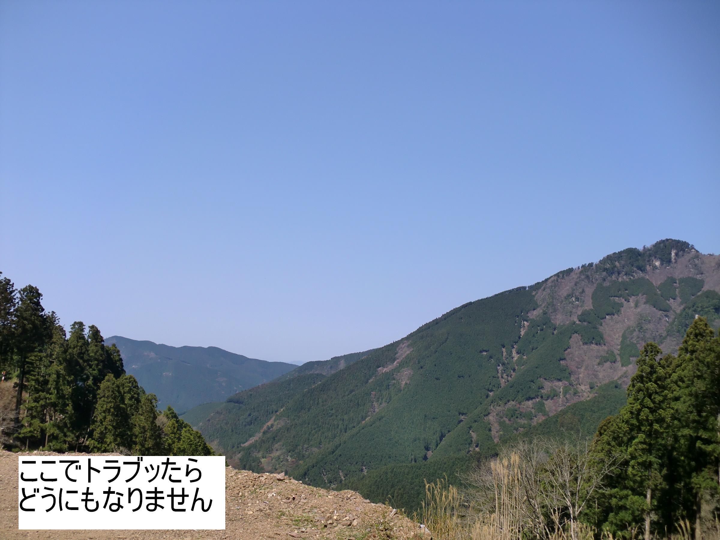 1005020014.jpg