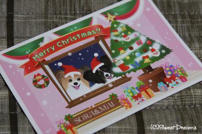 クリスマスカード頂きました☆
