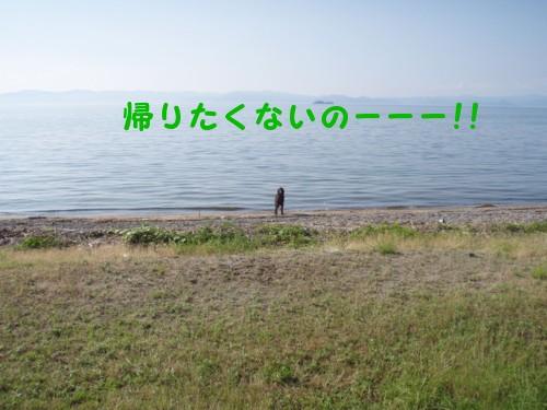琵琶湖 アロ帰らないの2