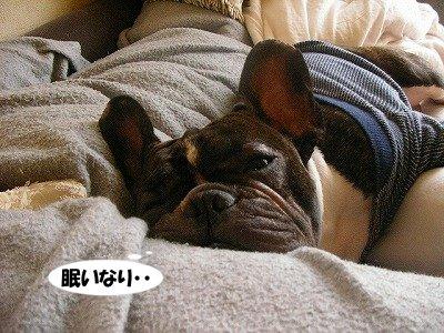 『眠いなり・・』