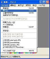 081225_peint-hiraku.jpg