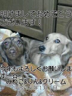 20060101004213