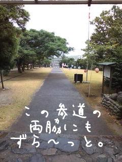 20080716131149.jpg