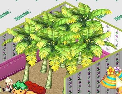ジャングル