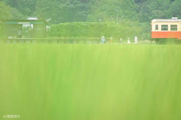夏色の上総川間駅