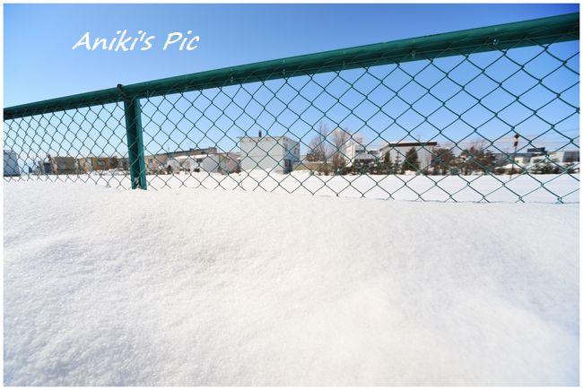 フェンス 冬