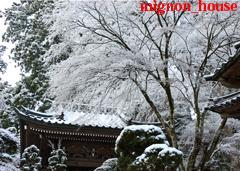 冬 - 雪の大雄山最乗寺