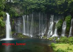 富士宮市)白糸の滝