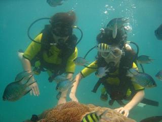 コーラル島 プーケット タイ 離島ツアー