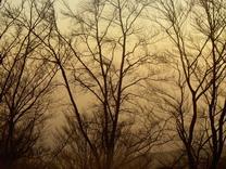 IMGP0615zagreb.sunset2.jpg