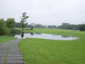 増水した第三公園の池