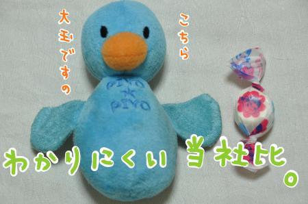 01-2_convert_20100830210927.jpg