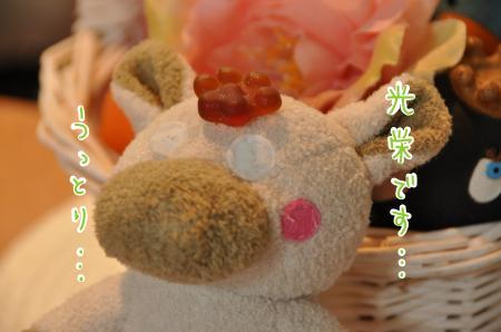 01-2_convert_20100915205840.jpg