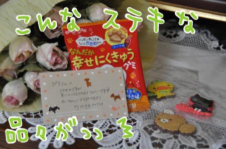 01-3_convert_20100915205914.jpg