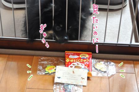 01-4_convert_20100915205942.jpg