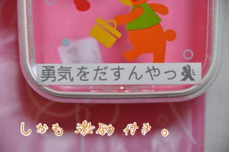 DSC_1123_convert_20101214223150.jpg