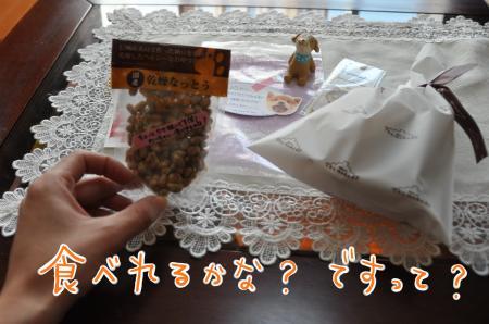 DSC_2767_convert_20110120210712.jpg