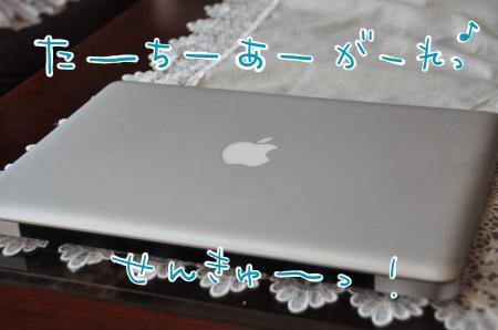 DSC_3608_convert_20110222130514.jpg