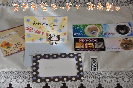 DSC_9013_convert_20101020084509.jpg