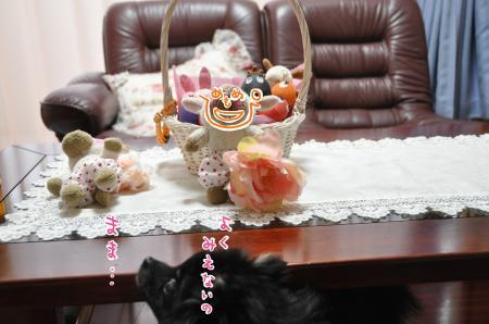 DSC_9842_convert_20101026210635.jpg